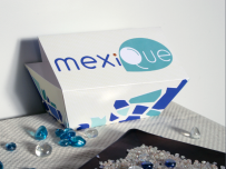 mexique package